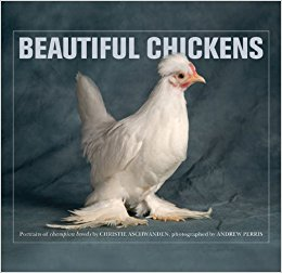 Win Beautiful Chickens with ChickenGuard