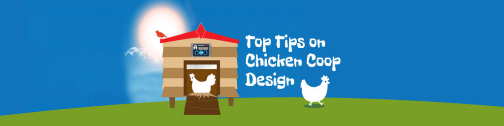 Coops, ChickenGuard, Top Tips for Chicken Coops