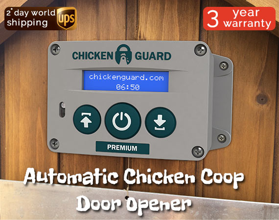 ChickenGuard Automatic Door Opener fits easily onto a Green Frog Coop