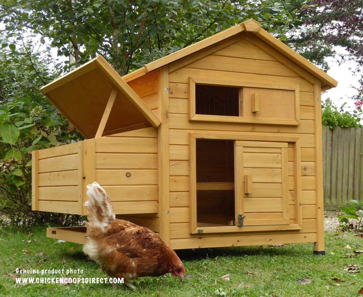 Chicken_Coops_Direct_Devon_Coop