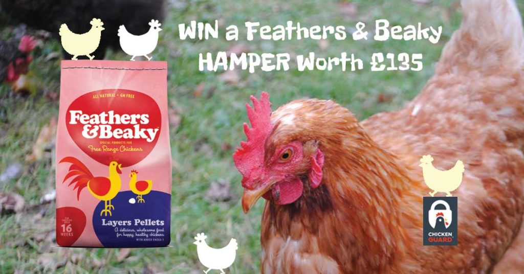 WIn a Feathers & Beaky Hamper