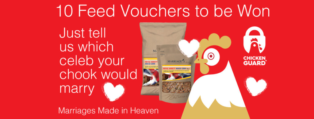 WIN Marriages Poultry Feed Vouchers